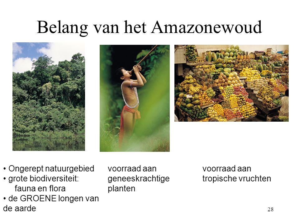 Belang van het Amazonewoud