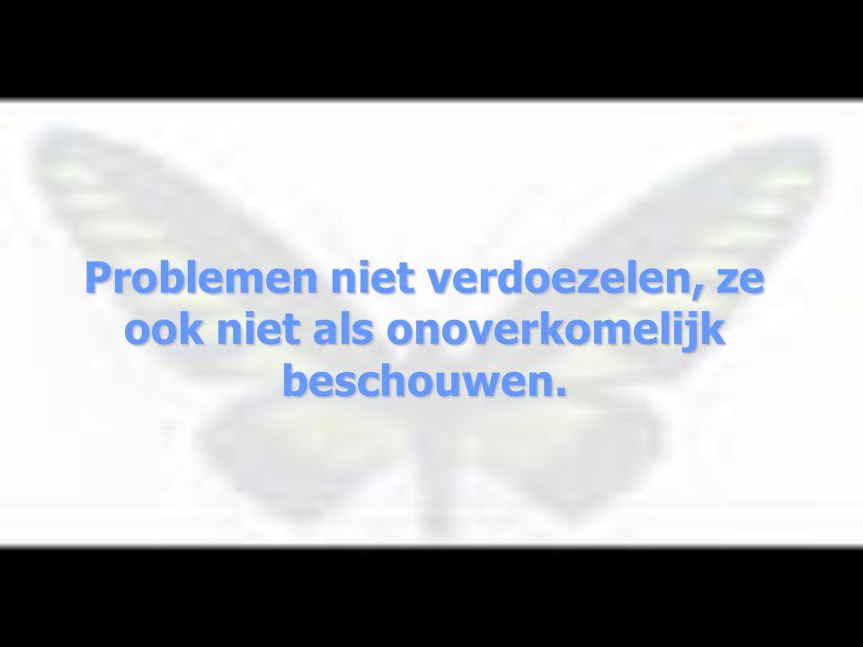 Problemen niet verdoezelen, ze ook niet als onoverkomelijk beschouwen.