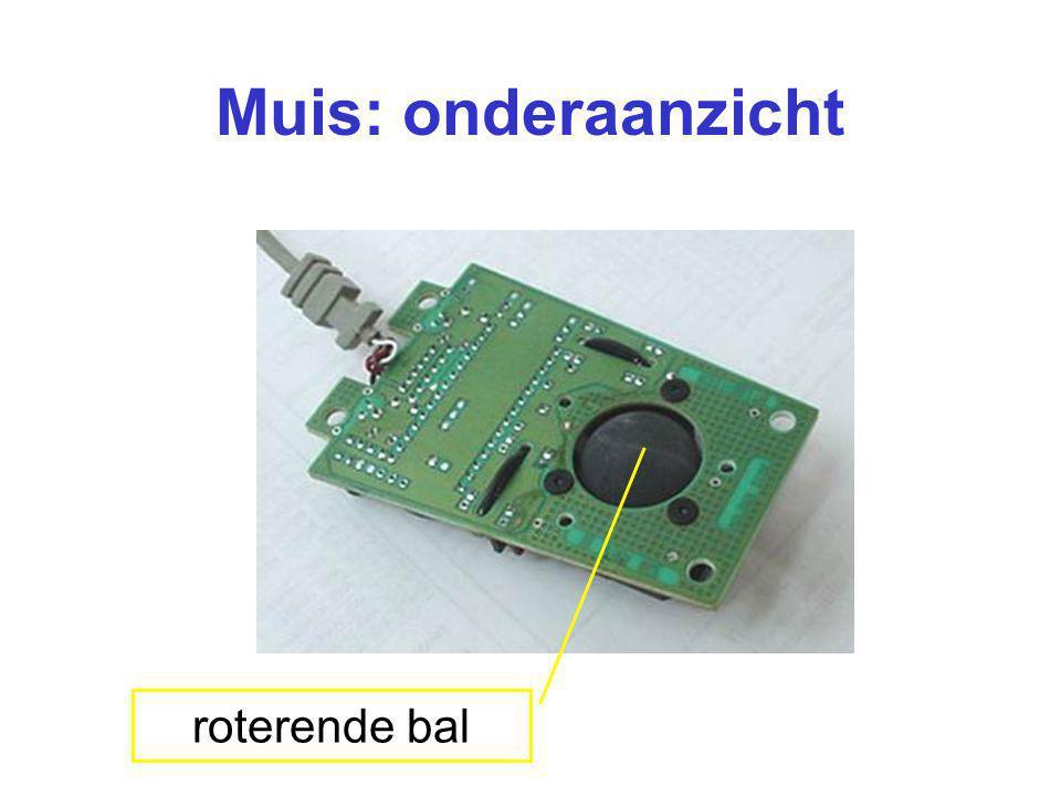 Muis: onderaanzicht roterende bal