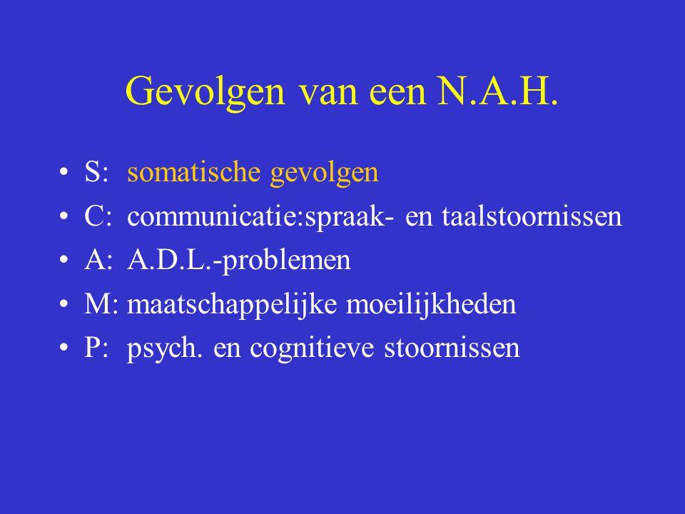 Gevolgen van een N.A.H. S: somatische gevolgen