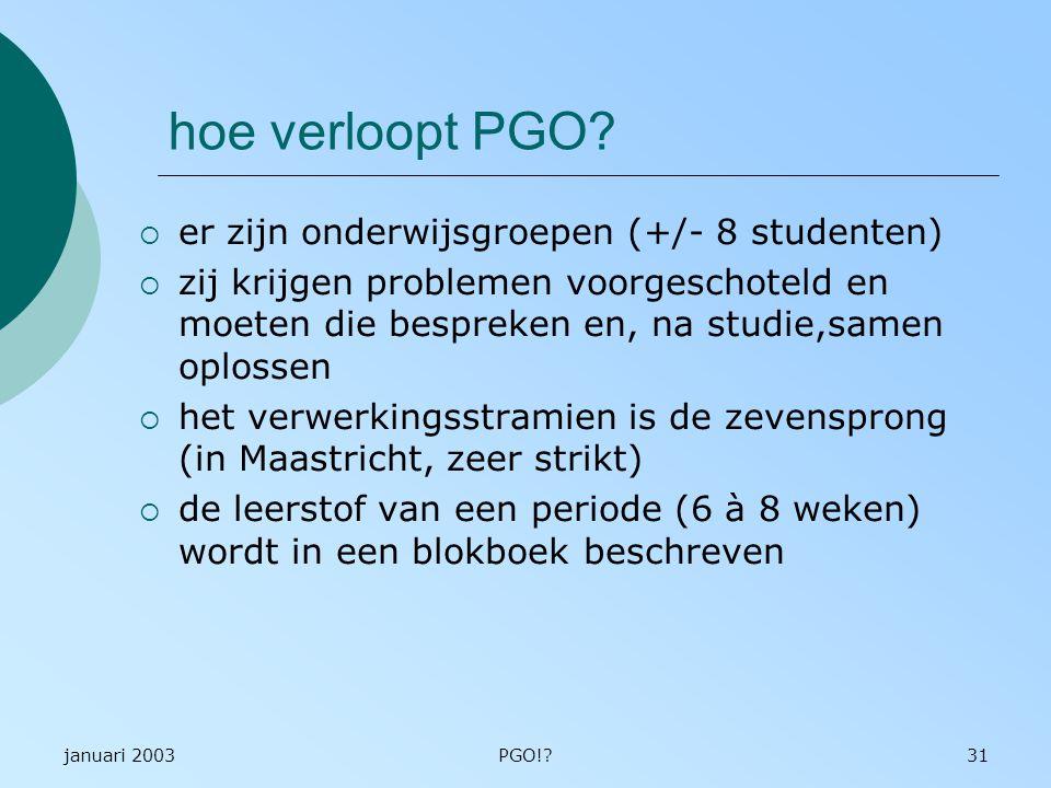 hoe verloopt PGO er zijn onderwijsgroepen (+/- 8 studenten)