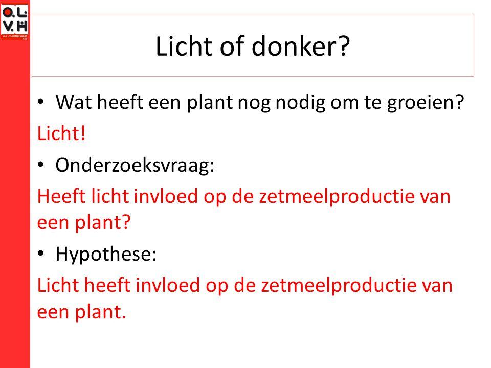 Licht of donker Wat heeft een plant nog nodig om te groeien Licht!
