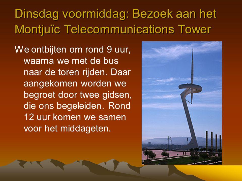 Dinsdag voormiddag: Bezoek aan het Montjuïc Telecommunications Tower