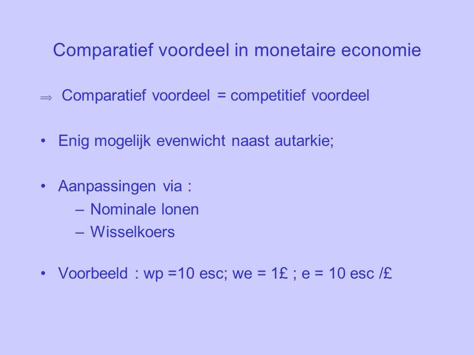 Comparatief voordeel in monetaire economie