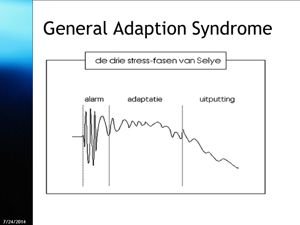 General Adaption Syndrome
