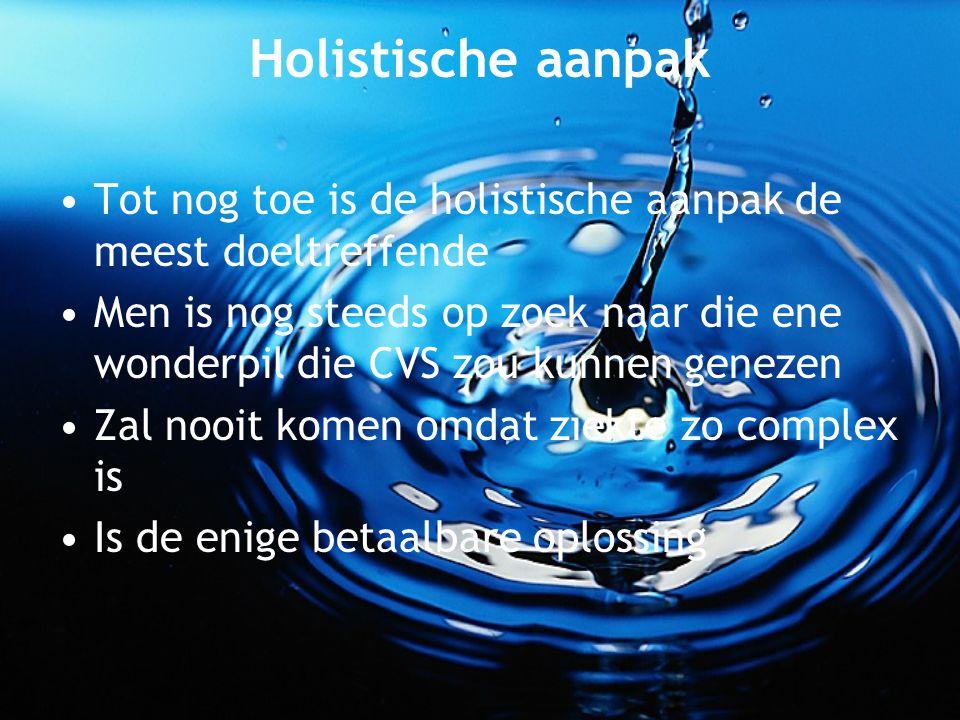 Holistische aanpak Tot nog toe is de holistische aanpak de meest doeltreffende.