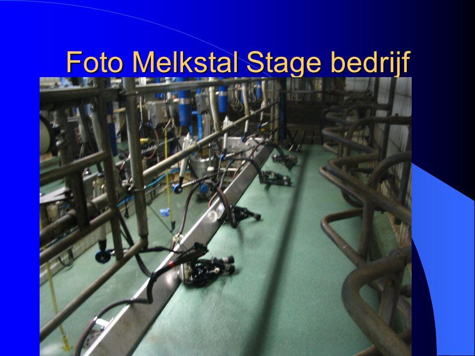 Foto Melkstal Stage bedrijf