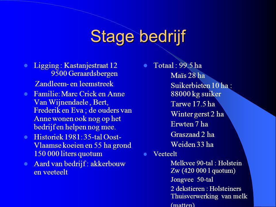 Stage bedrijf Ligging : Kastanjestraat 12 9500 Geraardsbergen