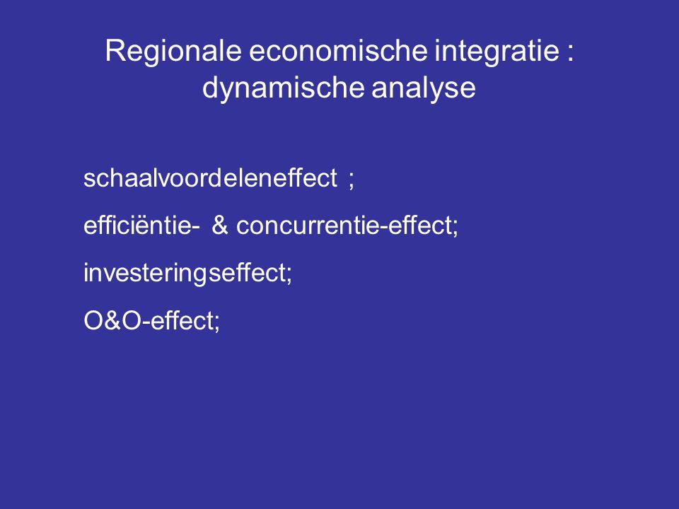 Regionale economische integratie : dynamische analyse