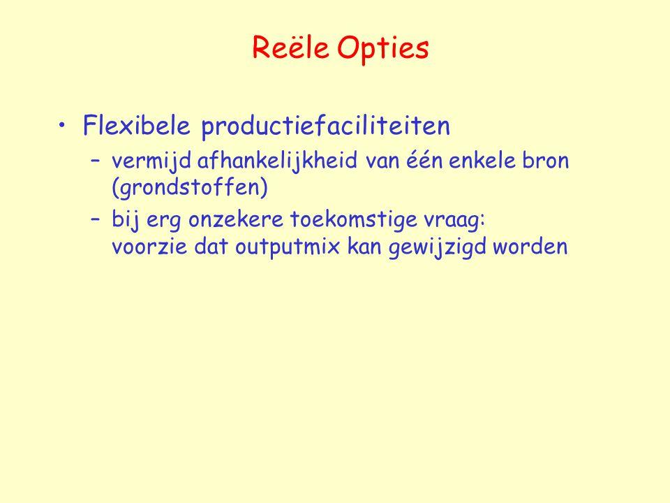 Reële Opties Flexibele productiefaciliteiten