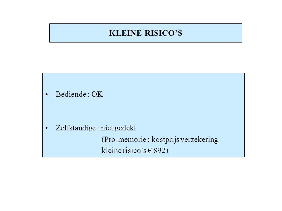 KLEINE RISICO'S Bediende : OK Zelfstandige : niet gedekt
