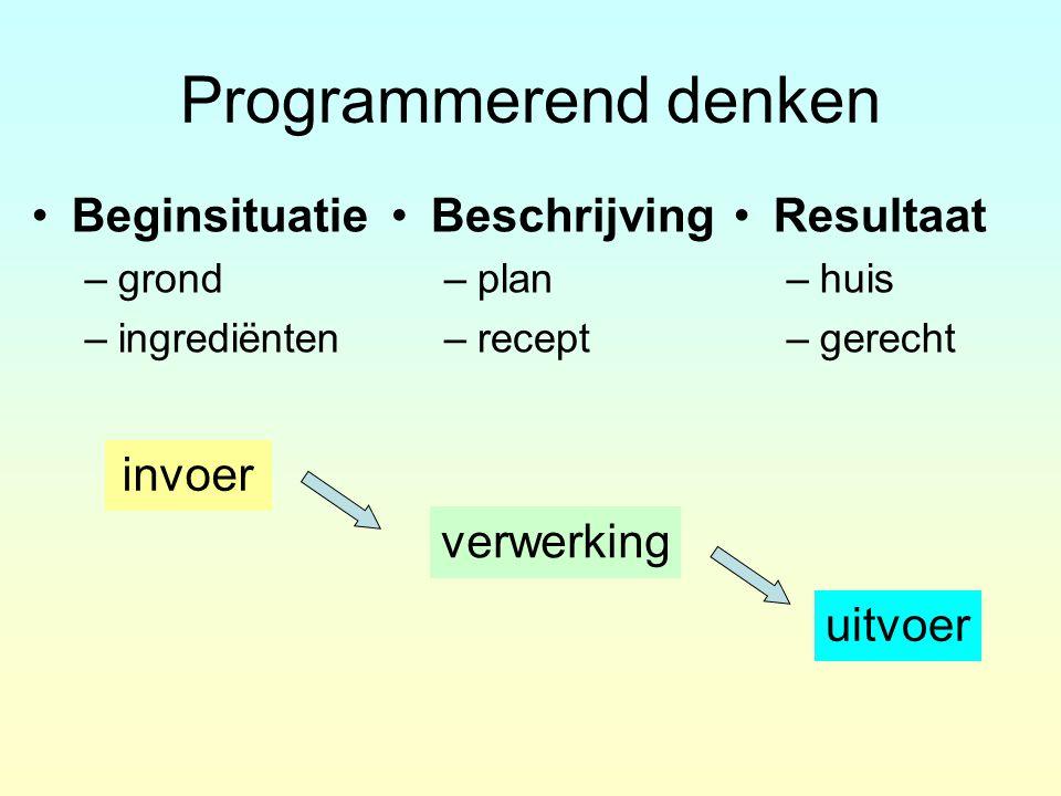 Programmerend denken Beginsituatie Beschrijving Resultaat invoer