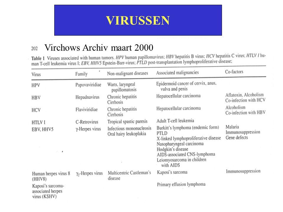 VIRUSSEN Virchows Archiv maart 2000