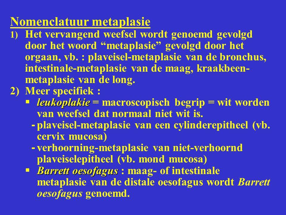 Nomenclatuur metaplasie