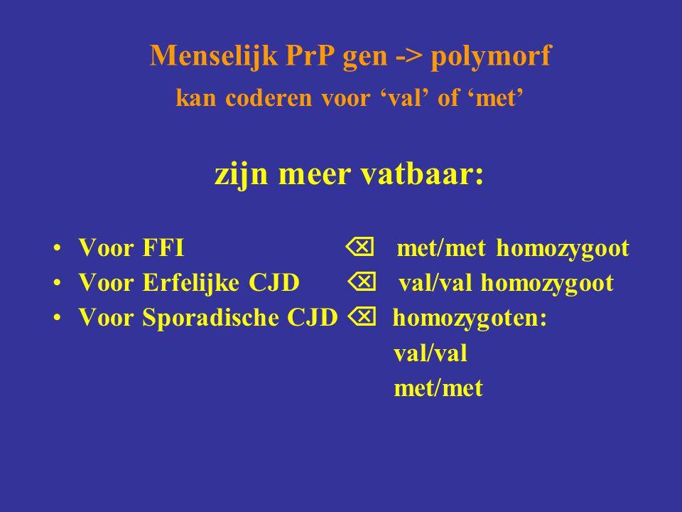 Menselijk PrP gen -> polymorf