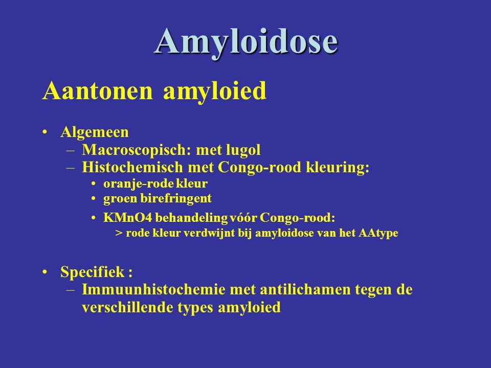Amyloidose Aantonen amyloied Algemeen Macroscopisch: met lugol
