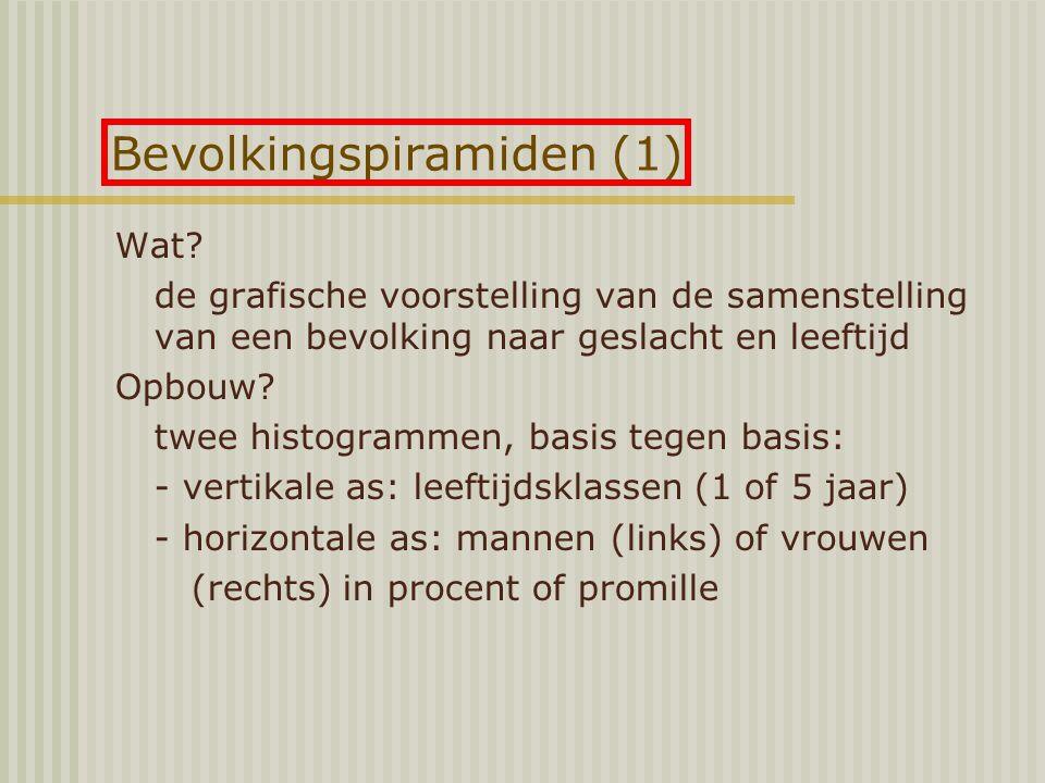 Bevolkingspiramiden (1)