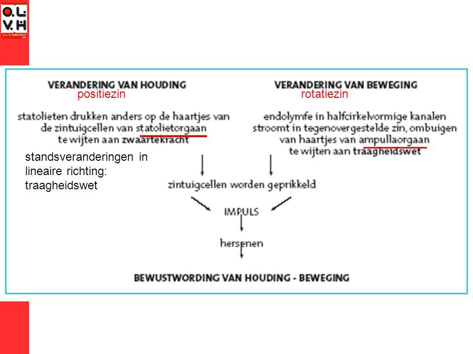 positiezin rotatiezin standsveranderingen in lineaire richting: traagheidswet