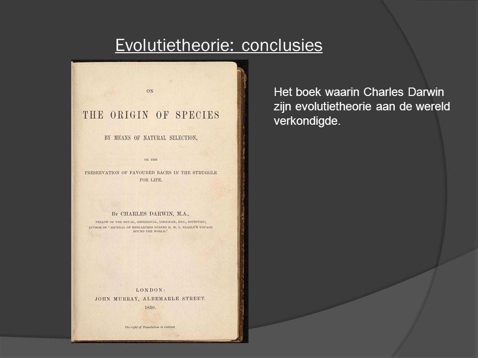 Evolutietheorie: conclusies