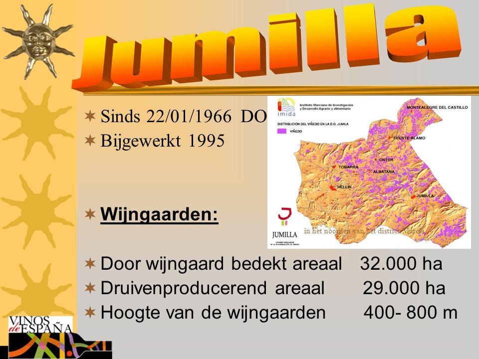 Jumilla Sinds 22/01/1966 DO Bijgewerkt 1995 Wijngaarden: