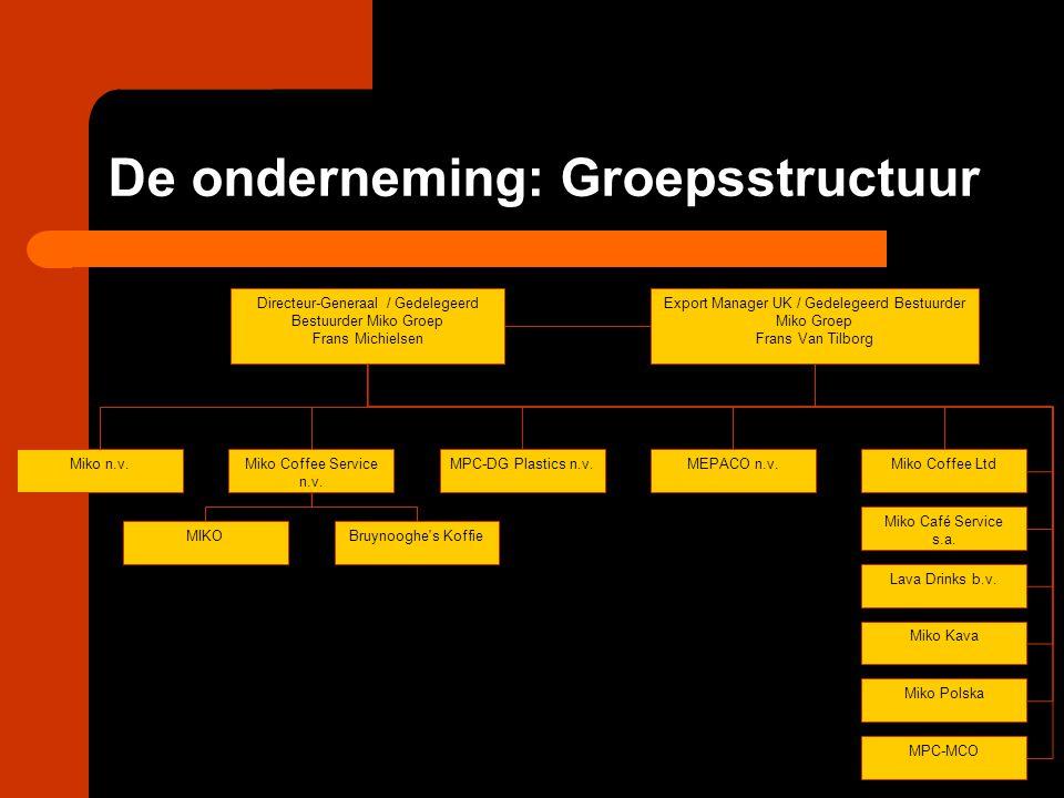 De onderneming: Groepsstructuur