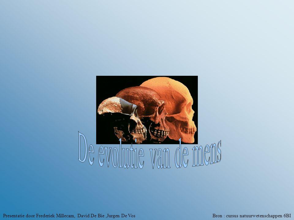 De evolutie van de mens Presentatie door Frederiek Millecam, David De Bie ,Jurgen De Vos Bron : cursus natuurwetenschappen 6BI.