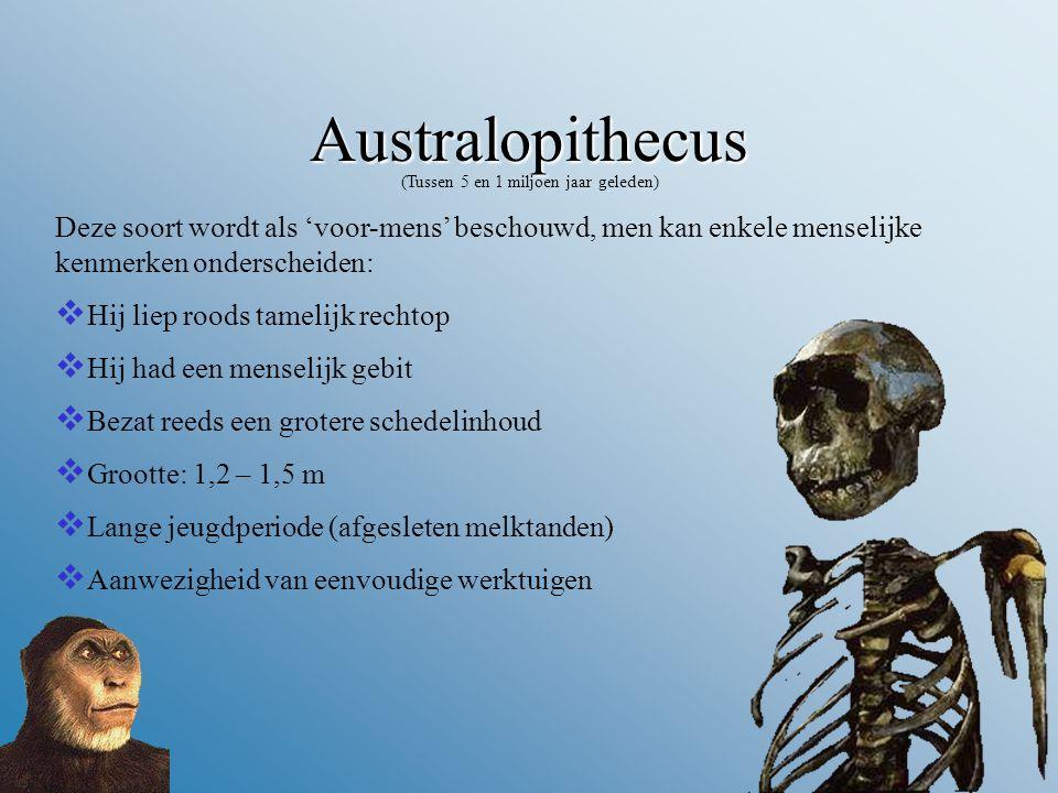 (Tussen 5 en 1 miljoen jaar geleden)