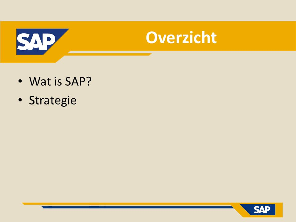 Overzicht Wat is SAP Strategie