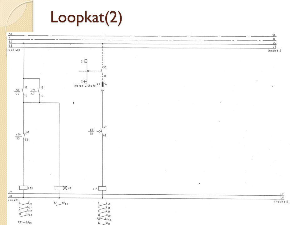 Loopkat(2)