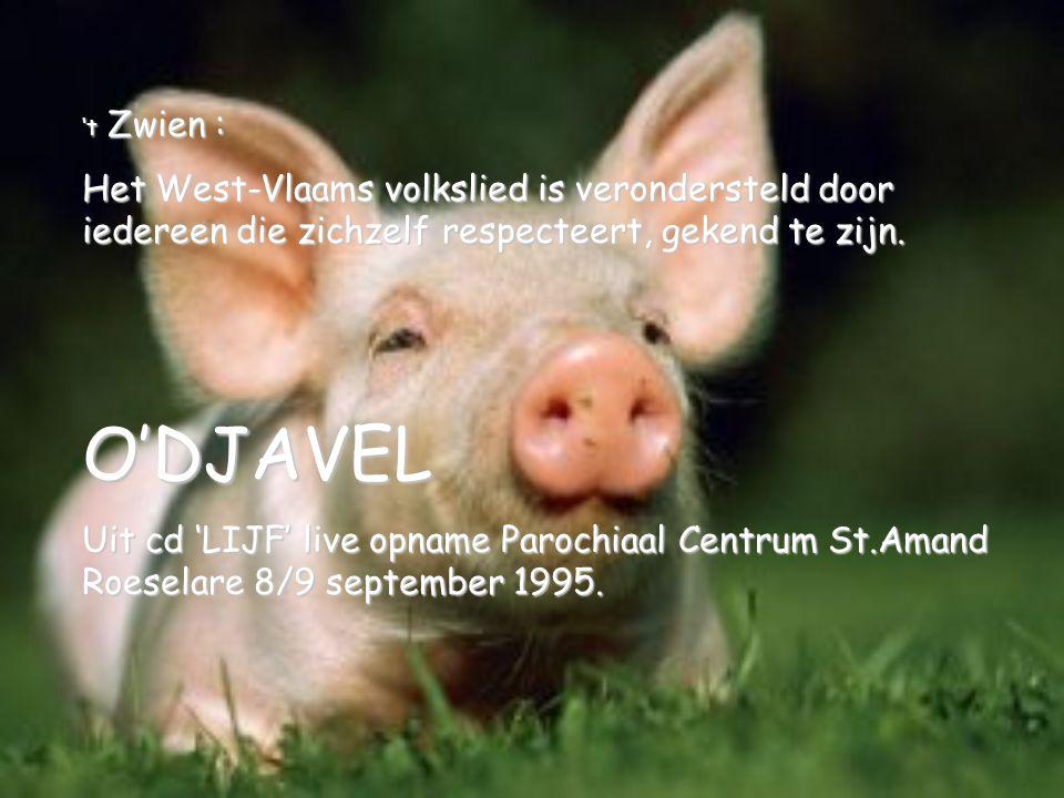 't Zwien : Het West-Vlaams volkslied is verondersteld door iedereen die zichzelf respecteert, gekend te zijn.