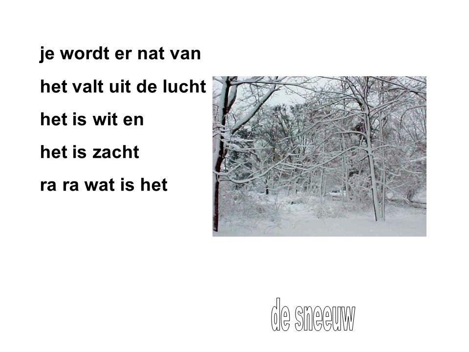 de sneeuw je wordt er nat van het valt uit de lucht het is wit en