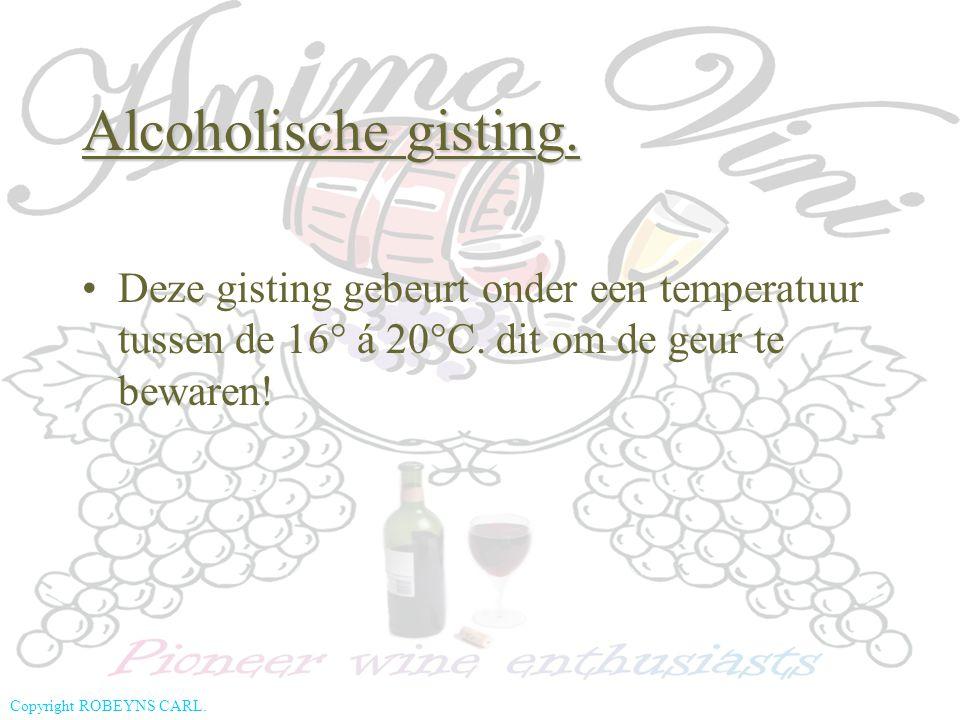 Alcoholische gisting. Deze gisting gebeurt onder een temperatuur tussen de 16° á 20°C.