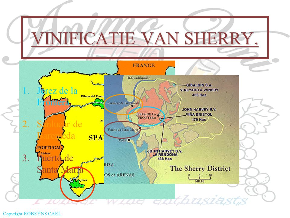 VINIFICATIE VAN SHERRY.
