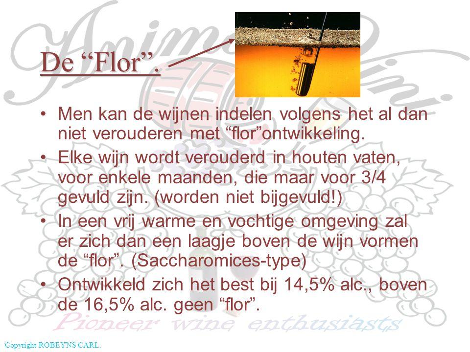 De Flor . Men kan de wijnen indelen volgens het al dan niet verouderen met flor ontwikkeling.