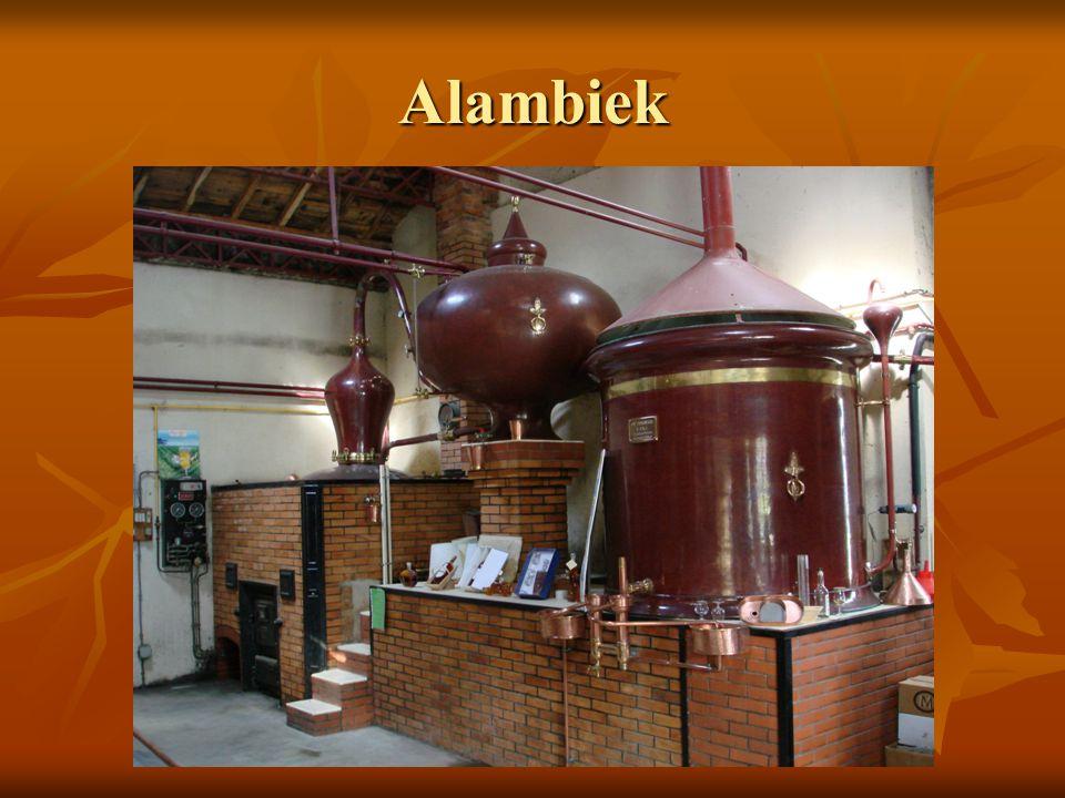 Alambiek Chauffe vin