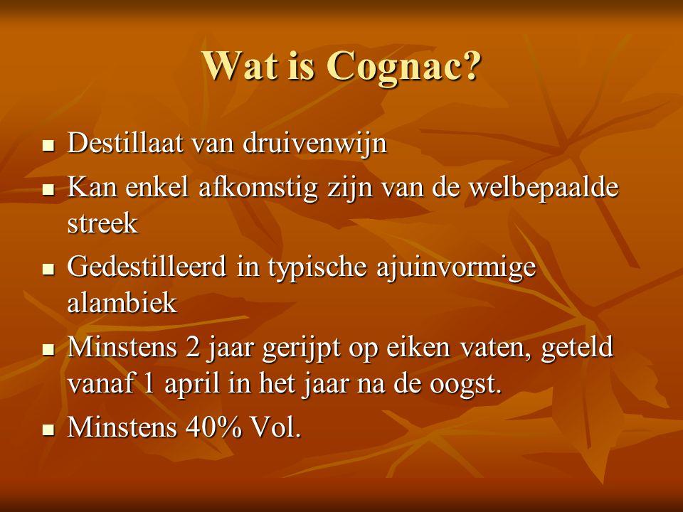 Wat is Cognac Destillaat van druivenwijn