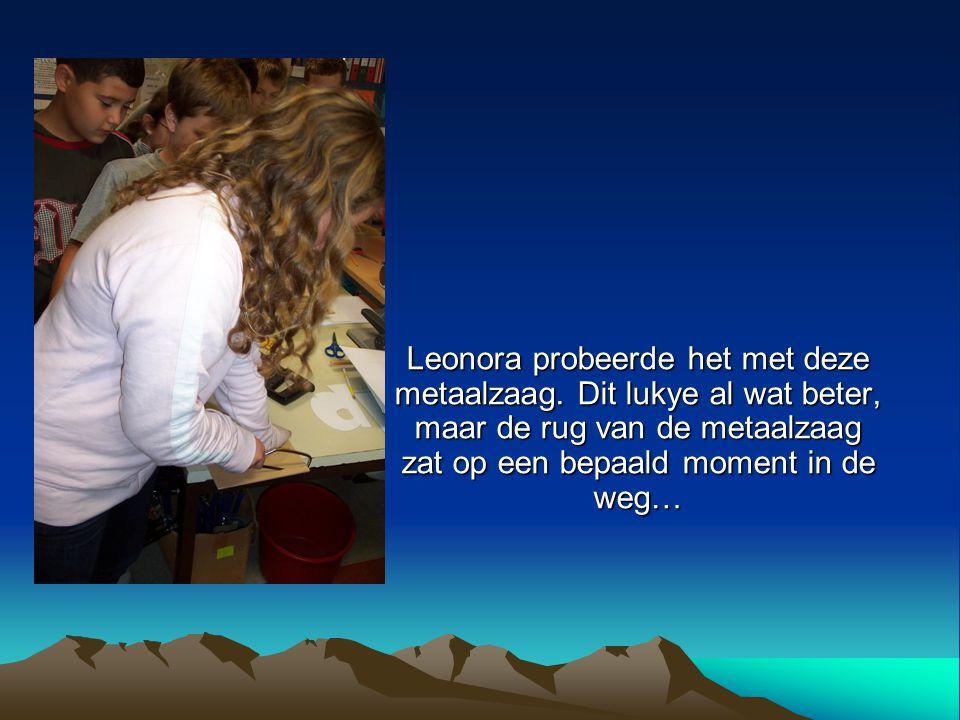 Leonora probeerde het met deze metaalzaag