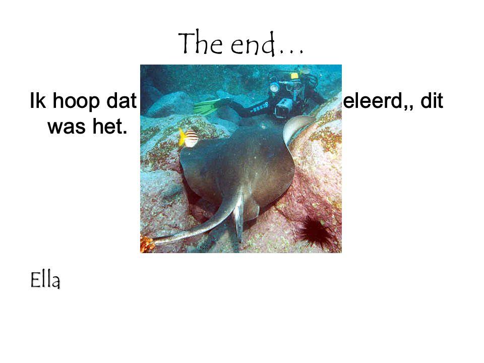 The end… Ik hoop dat jullie wat hebben bijgeleerd,, dit was het. Ella