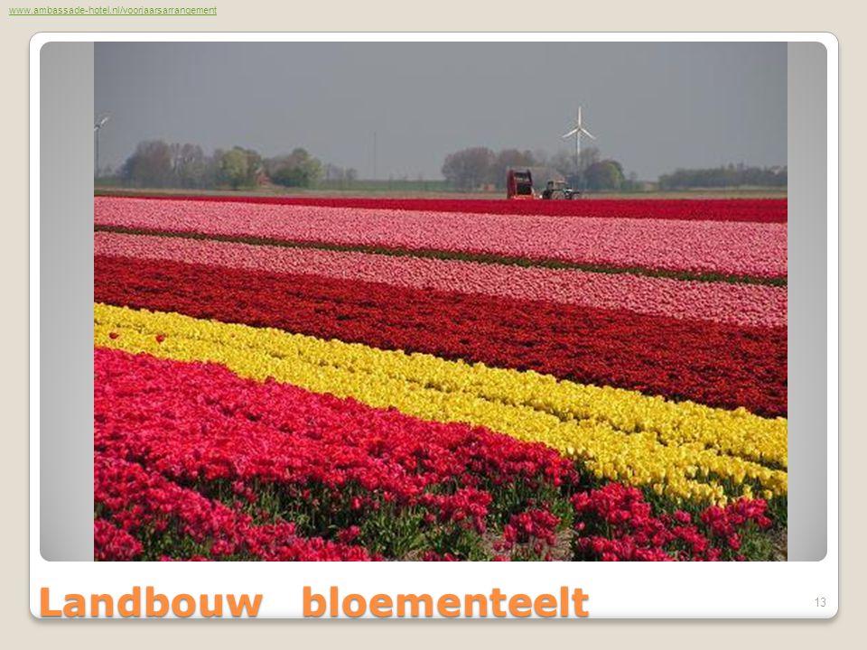 Landbouw bloementeelt