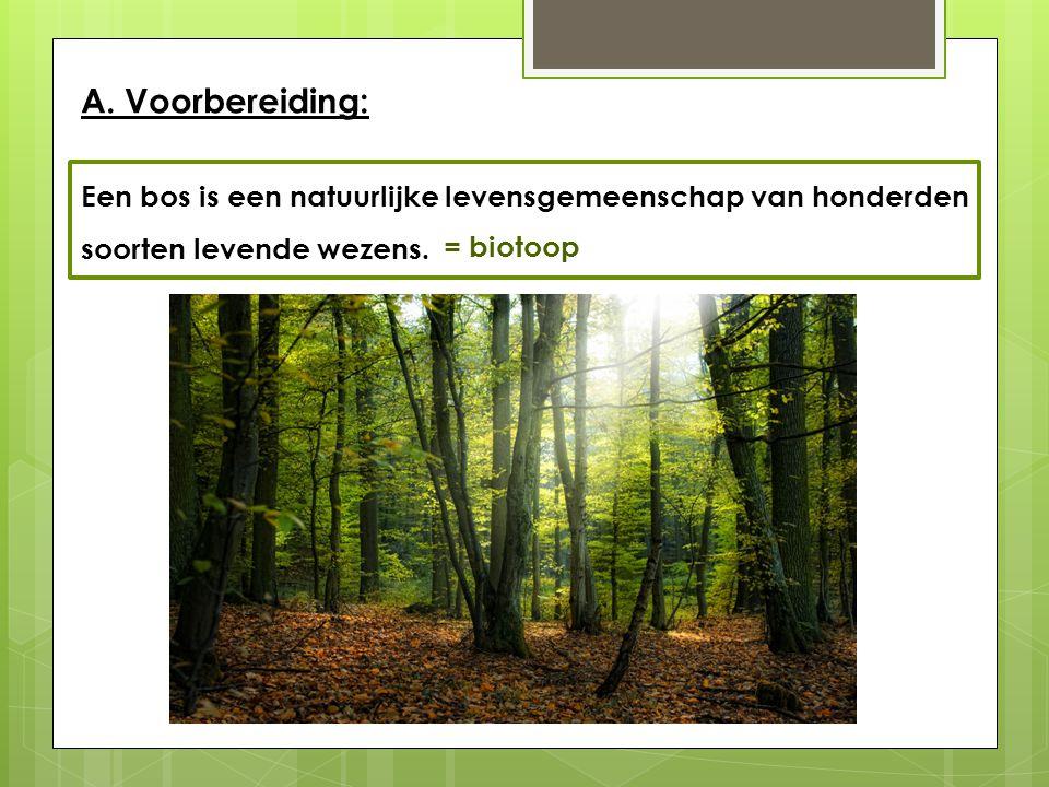 A. Voorbereiding: Een bos is een natuurlijke levensgemeenschap van honderden. soorten levende wezens.