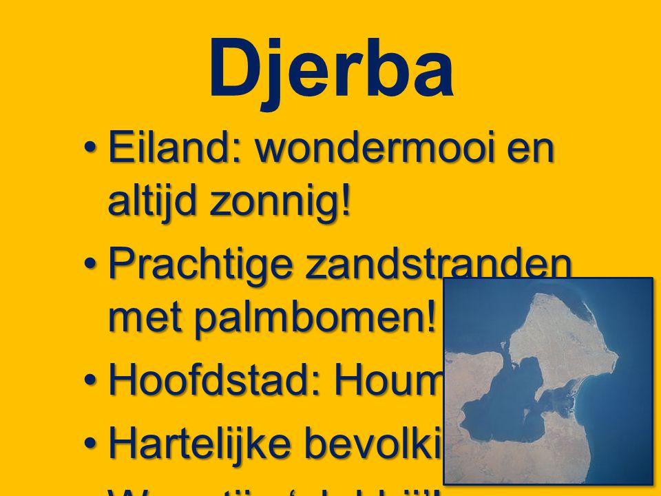 Djerba Eiland: wondermooi en altijd zonnig!