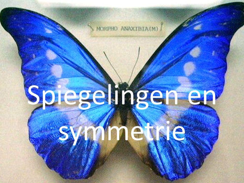 Spiegelingen en symmetrie