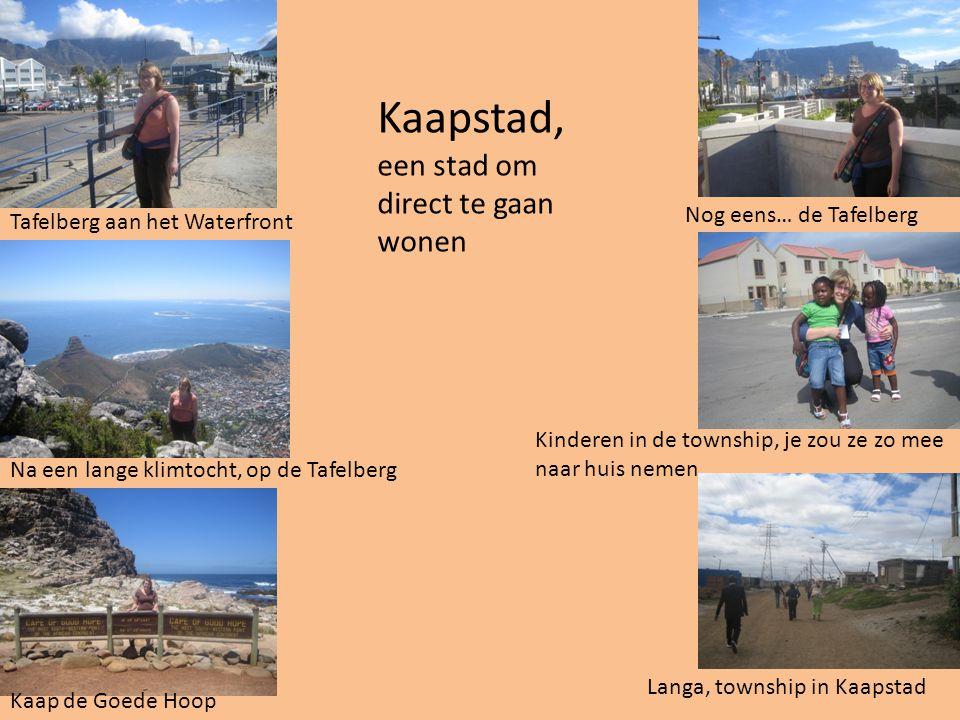 Kaapstad, een stad om direct te gaan wonen