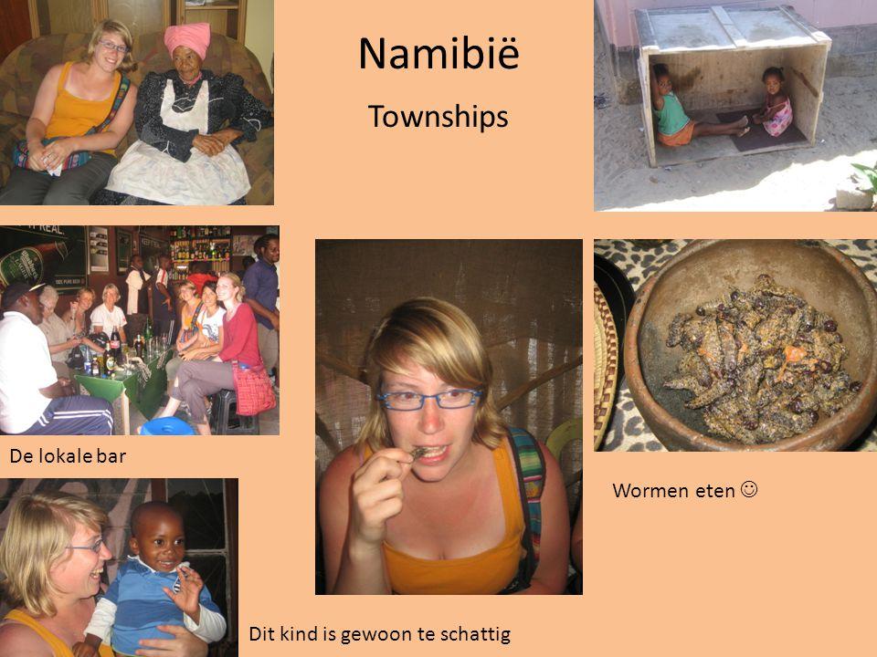 Namibië Townships De lokale bar Wormen eten 