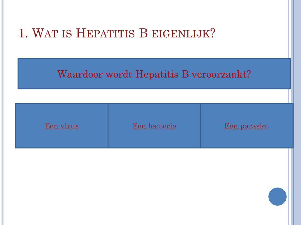 1. Wat is Hepatitis B eigenlijk