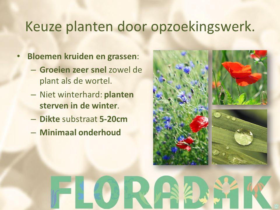 Keuze planten door opzoekingswerk.