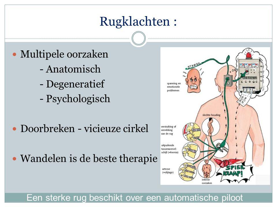 Rugklachten : Multipele oorzaken - Anatomisch - Degeneratief