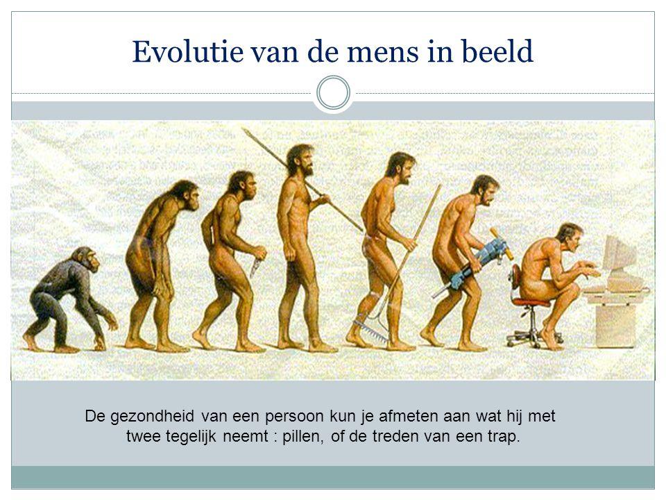 Evolutie van de mens in beeld