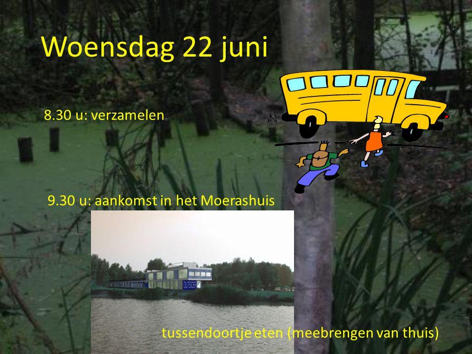 Woensdag 22 juni 8.30 u: verzamelen 9.30 u: aankomst in het Moerashuis