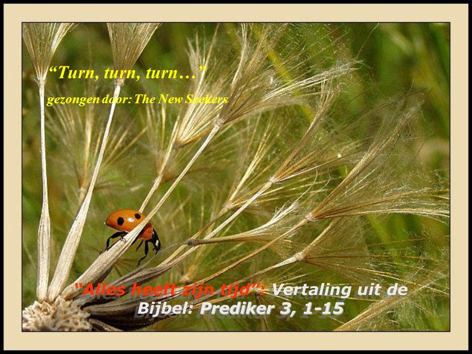 Alles heeft zijn tijd : Vertaling uit de Bijbel: Prediker 3, 1-15